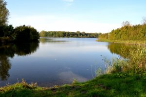 Natuurgebied de Schelphoek